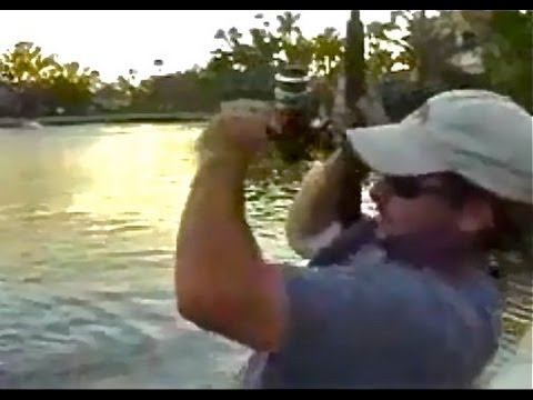 Big Snook Fishing Challenge