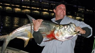 Big TARPON and SNOOK Fishing With CAPTAIN JEFF