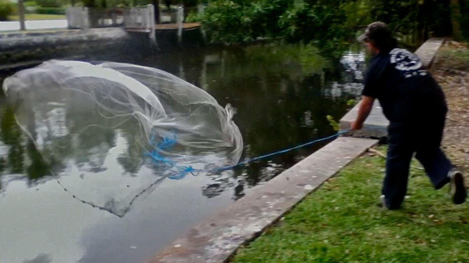 Cast Net Throwing! NINJA STYLE Amazing Accuracy On Moving Fish