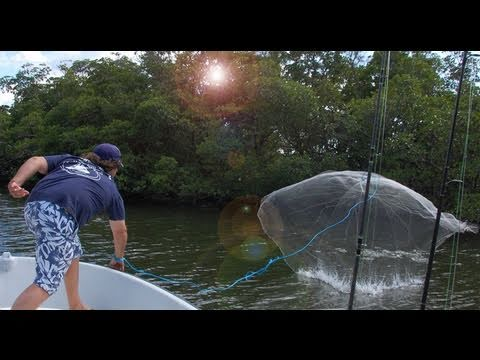 Easy Throw Cast Net Video – Capt Jeff Lunkerdog