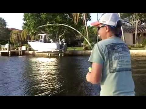 EXTREME Urban Fishing MONSTER Tarpon
