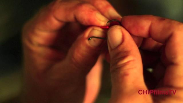 Fishing Tip – Inshore Live Bait