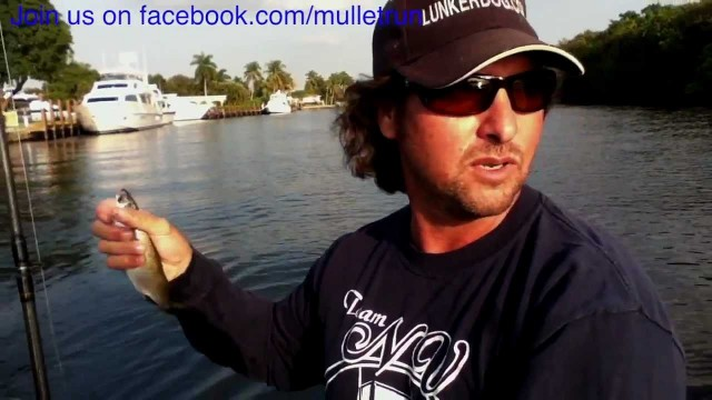 Fishing Tips: How to use Circle Hook on Live Bait