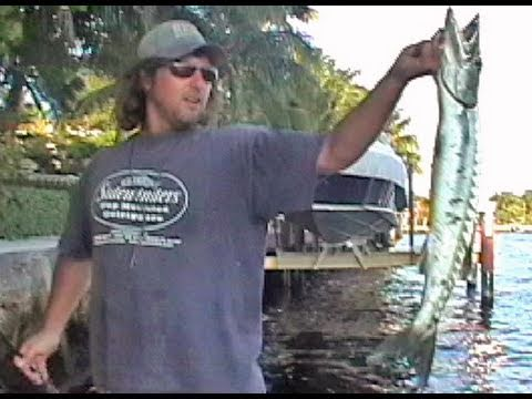 Funny Fishing | Barracuda Jumps in Boat!