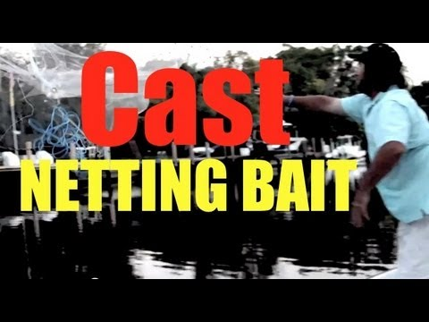 How To Throw A Cast Net SUPER EASY METHOD
