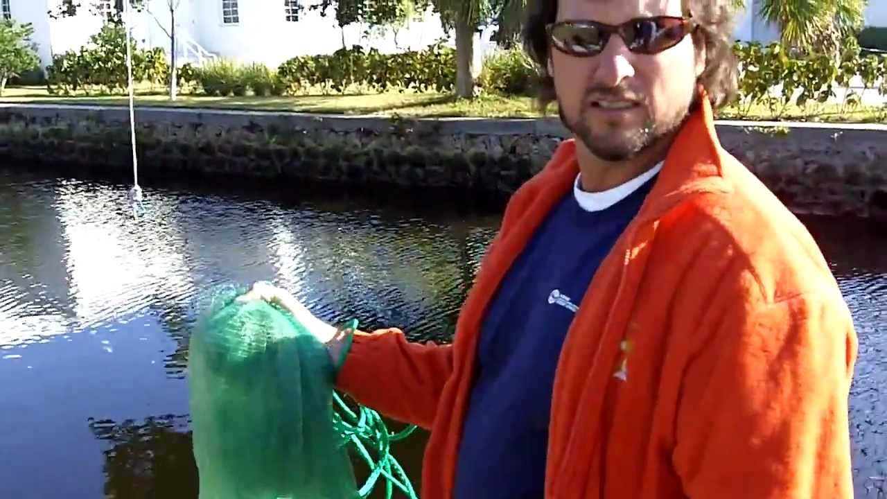 "How To Throw A Cheap ""Cast Net"""