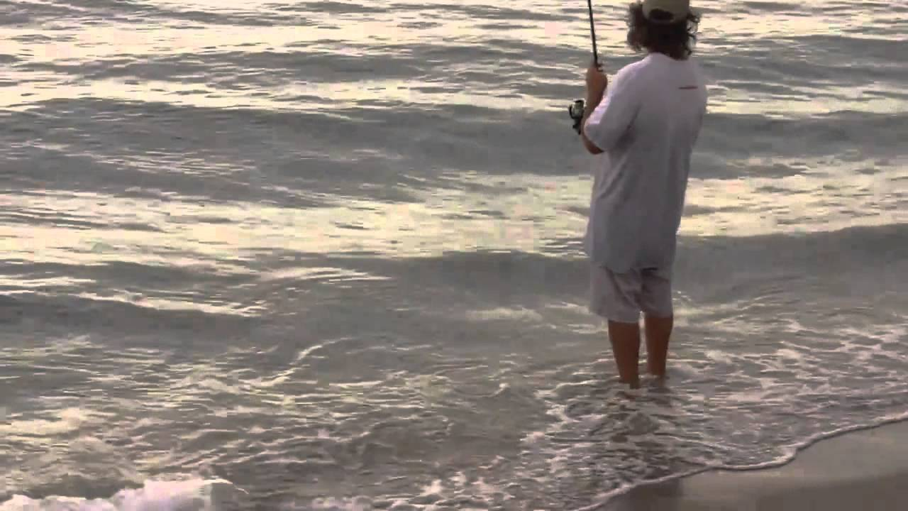 Inshore Live Bait Fishing On The Beach Mullet Run