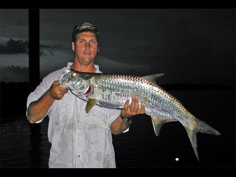 Inshore Secrets of Tarpon Fishing Revealed