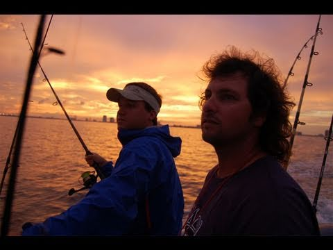 Live Bait Fishing South Florida