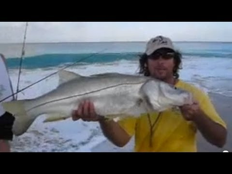 Most Amazing SNOOK video ever