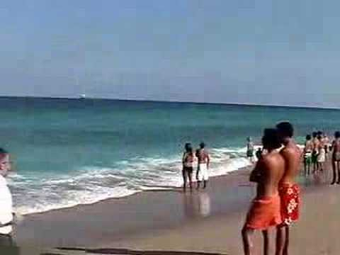 Sharks Terrify Swimmers!!! Fort Lauderdale Beach