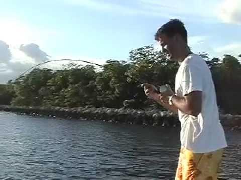 Snook Fishing Port Everglades Fort Lauderdale