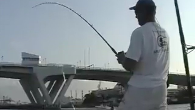 Tarpon Fishing Light Tackle Live Bait