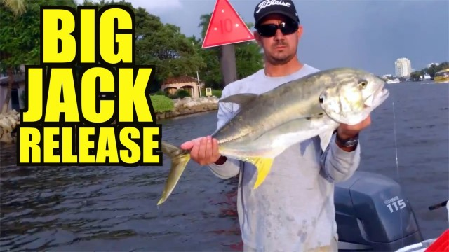 Big Jack Release