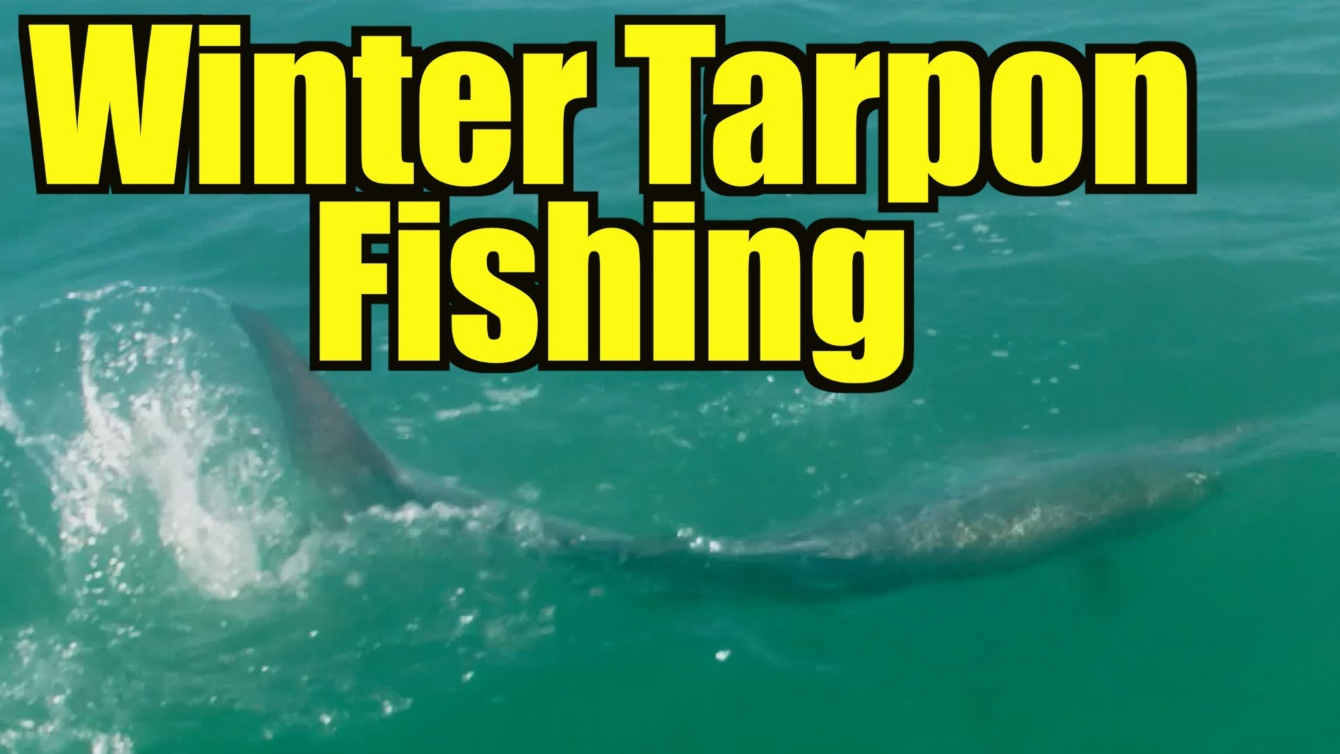 Winter Tarpon Fishing
