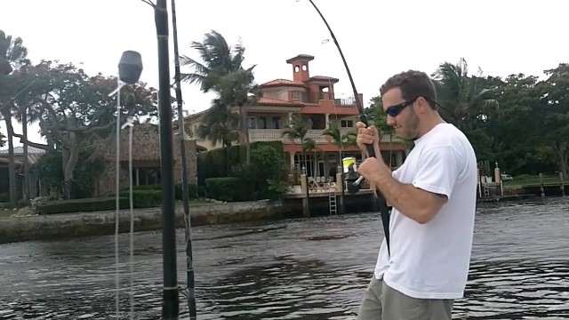 Insane Neighborhood Fishing. You must see these fish!