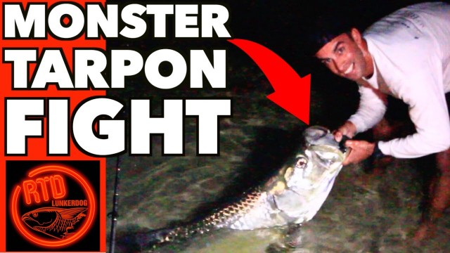 Monster Tarpon Fish Battle – Musso's Big Fish – Lunkerdog