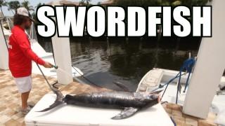 Swordfish On The Zinndog – Lunkerdog