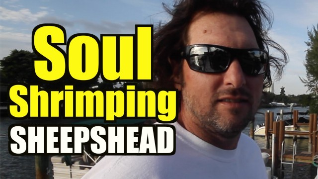 Amazing Sheepshead Fishing Florida