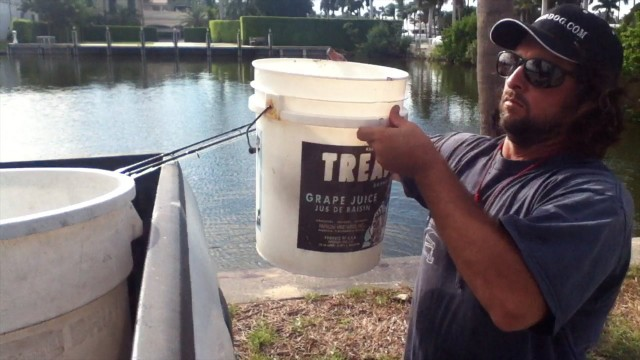 Best Fishing Live Bait Bucket System! Pilchard and Mullet