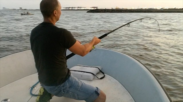 American Tarpon Fishing