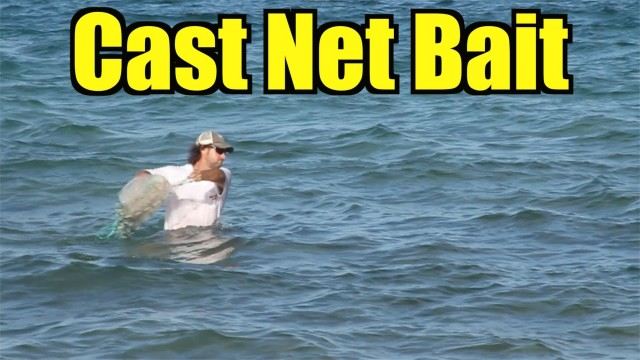 Cast Netting Bait at the Beach Throwing 7 foot Cast Net