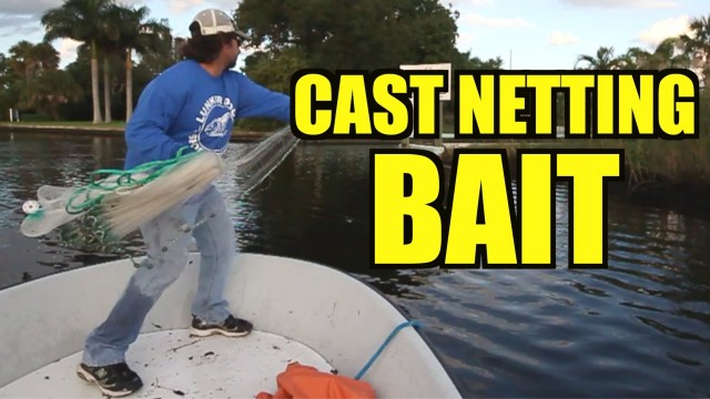 Cast Netting Live Bait