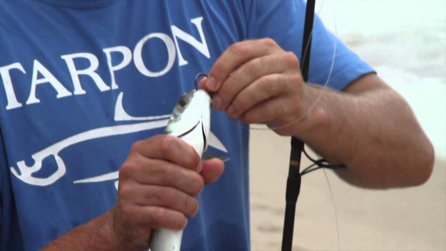 How To Hook A Live Bait Fish