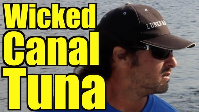 Double Feature: WICKED CANAL TUNA and TARPON LESSON