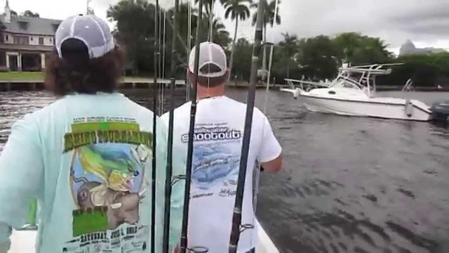 Live Bait Tarpon Fishing Captain Jeff the Lunkerdog