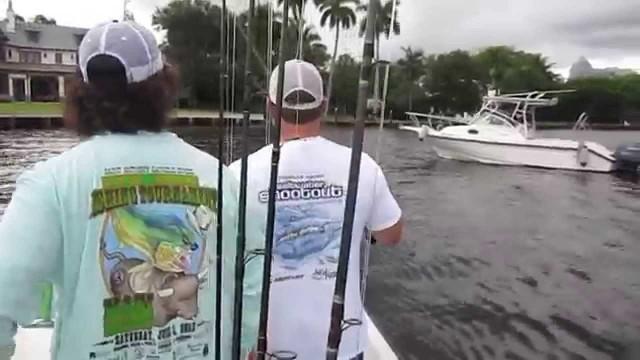 Live Bait Tarpon Fishing Captain Jeff the Lunkerdog