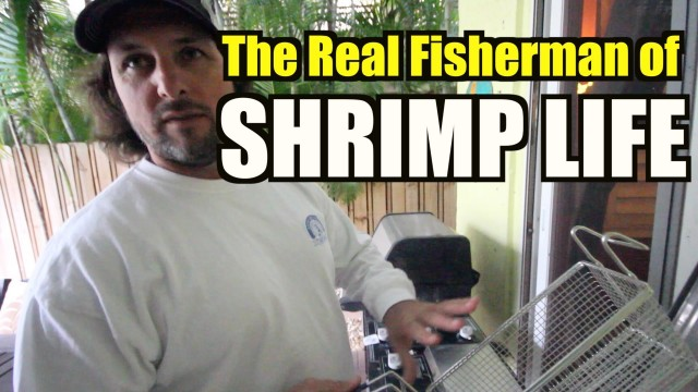 SHRIMP LIFE ALLSTARS Deep Frying – Captain Jeff