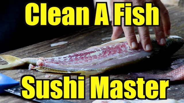 This Fish Cleaning Video Is Very Well Shot