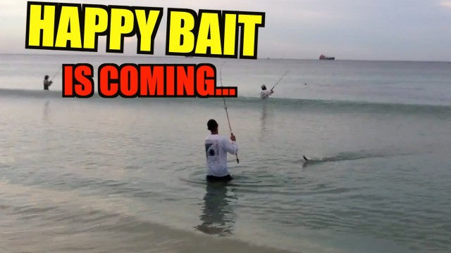 Are You Ready For Happy Bait