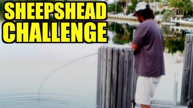 Sheepshead Fishing With Shrimp FAIL