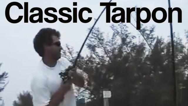 Ultimate Tarpon Hookset – Lunkerdog