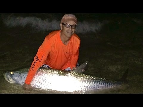 Monster Tarpon Fishing From The Beach