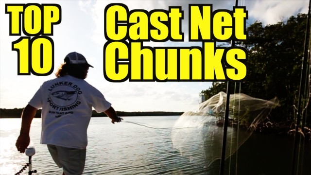 The Best Cast Net Videos On YouTube