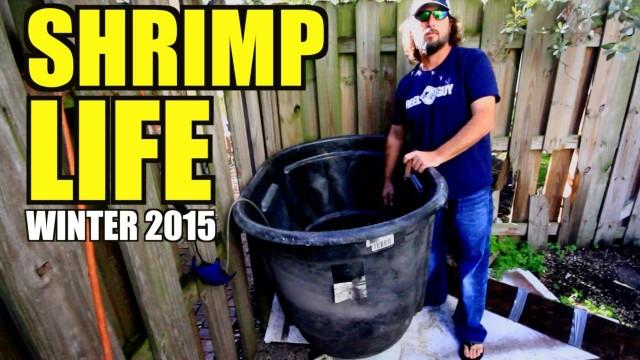 FISH GAME – Keeping Winter Bait Alive in Mega Bucket