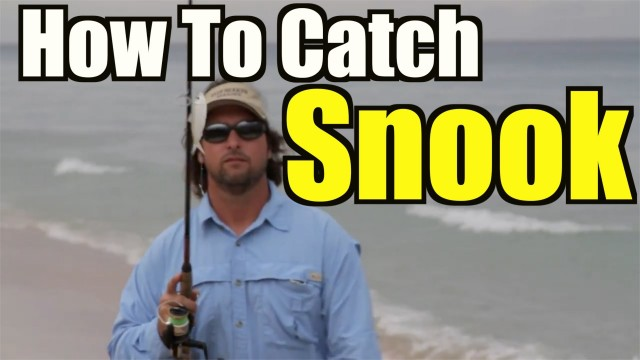 How To Catch Snook – Beach Fishing Tips