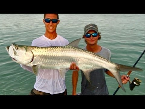Best Beach Fishing You Have Ever Seen – LIve Bait For Sportfish