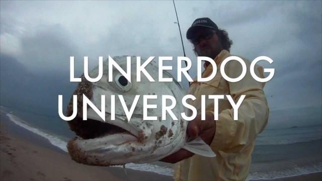 Lunkerdog U – Beach Jack Fishing