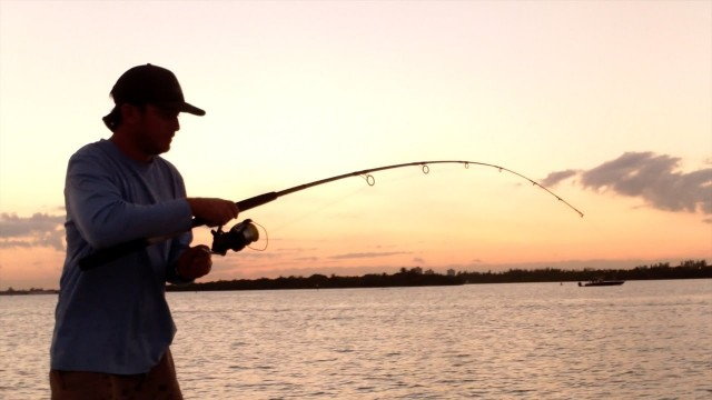 Throw Your Tackle Box In The Water When You See Real Fishing