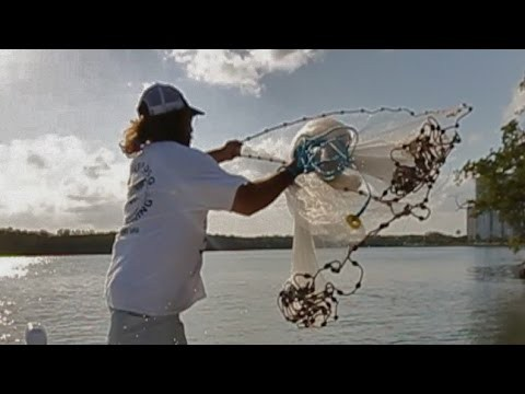 Throw a Cast Net This Way And You Will Get Bait