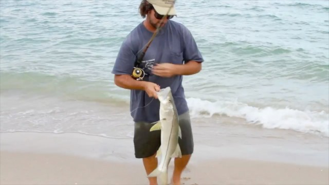 Snook Fishing School – How To Happy Bait For Beginners